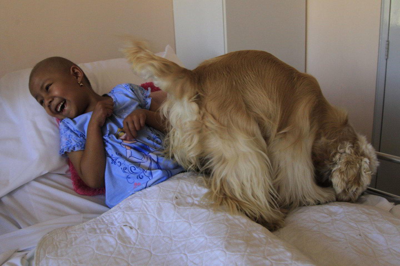 Buvimas su šunimis vaikus ne tik pralinksmina, bet ir palengvina būseną po chemoterapijos.<br>AP