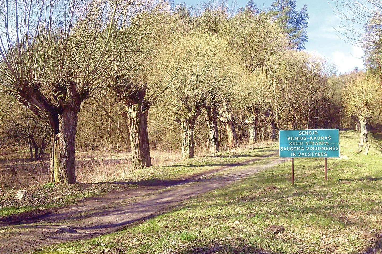 Nedidelė dalis senojo kelio Vilnius–Kaunas išlikusi už Žemųjų Panerių rajono.<br>V.Michalovskio nuotr.