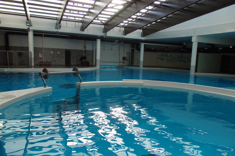 Delfinų valdos išsiplėtė.<br>A.Pilaitienės nuotr.