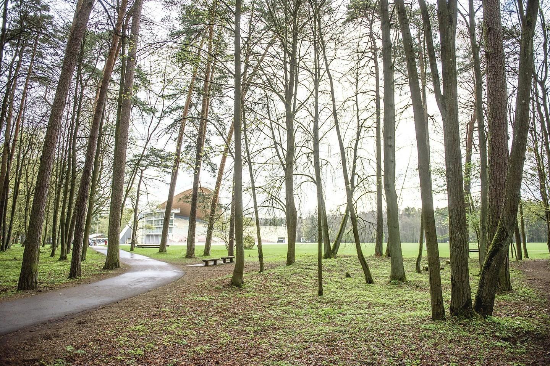 Darbininkai jau sutvarkė apie 50 hektarų Vingio parko. Planuojama, kad per metus brūzgynų neliks.<br>D.Umbraso nuotr.