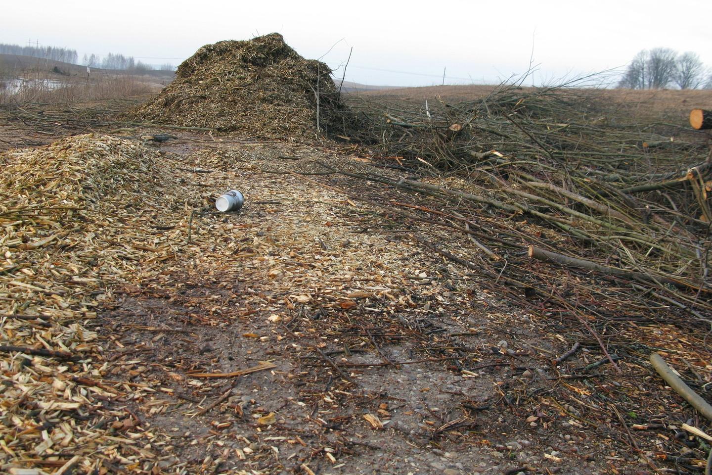 Absoliuti dauguma sandorių (96 proc.) buvo sudaryti siekiant užsitikrinti biokuro tiekimą einamajam šildymo sezonui.<br>A.Srėbalienės nuotr.
