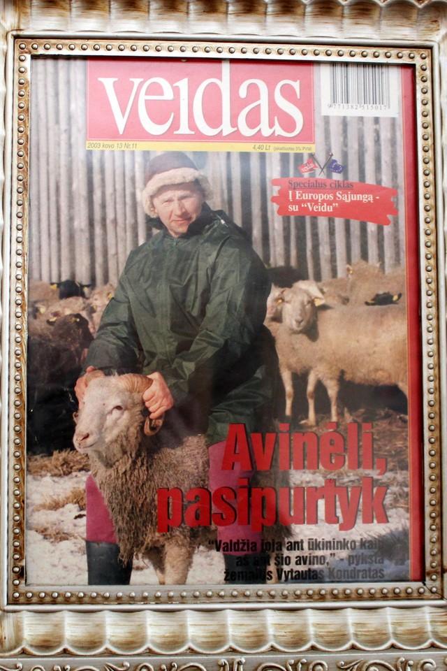 Apie V.Kondrato laimėjimus ūkininkaujant byloja diplomai, apie jį rašytų straipsnių iškarpos. Apdovanojimą V.Kondratui įteikęs prezidentas Valdas Adamkus vėliau ūkininką pagerbė ir apsilankydamas jo ūkyje.<br>R.Vitkaus nuotr.