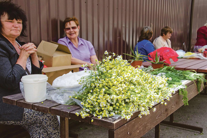 Stoties turgavietėje pardavėjos siūlo soduose išaugintų ir miškuose skintų vaistingųjų augalų. Moterys negaili patarimų, kaip juos naudoti sveikatai gerinti.<br>M.Balčiūno nuotr.