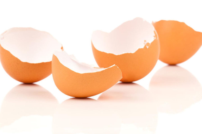 Neišmeskite kiaušinių lukštų. Jie jums pravers.<br>123rf.com nuotr.
