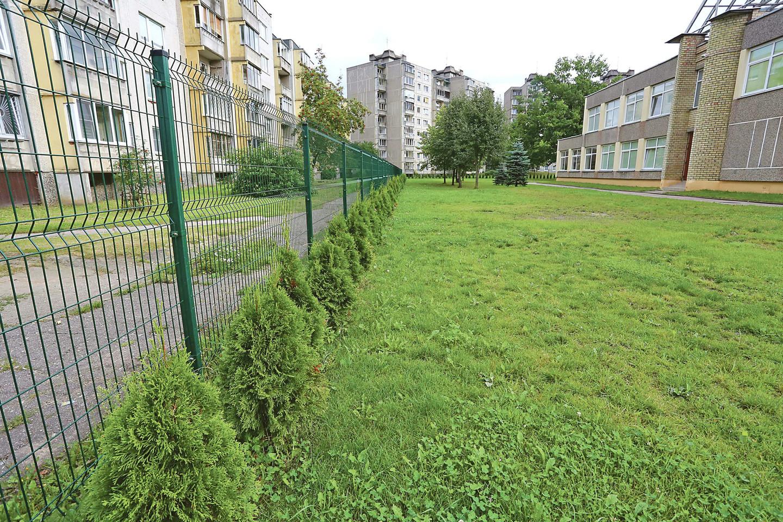 Prano Mašioto pradinės mokyklos bendruomenė džiaugiasi tujų gyvatvore.