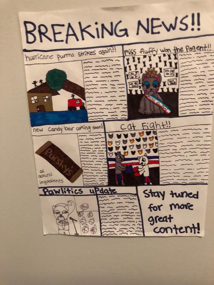 Kad katinui nebūtų nuobodu tupėti kraiko dėželėje, mergaitės specialiai jam nupiešė laikraštį.<br>Reddit.com nuotr.