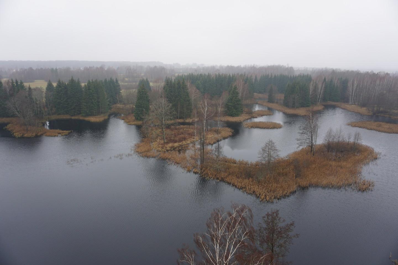 Vaizdas į Kirkilų ežerą.<br>G.Balčiūtės nuotr.