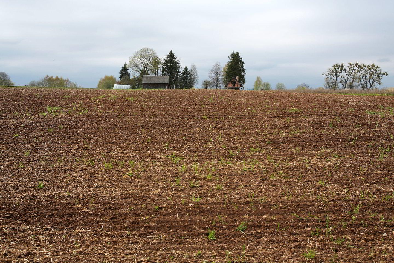 Progresiniai nekilnojamojo turto mokesčiai taikomi ir garažams, ir sodo nameliams, ir sodyboms.<br>M.Patašiaus nuotr.