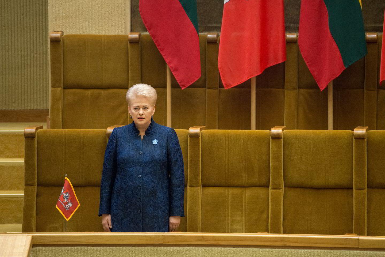 Prezidentės Dalios Grybauskaitės susirašinėjimo detektyvas ir toliau nerimsta – kur galėjo dingti laiškai iš serverių?<br>J.Stacevičiaus nuotr.