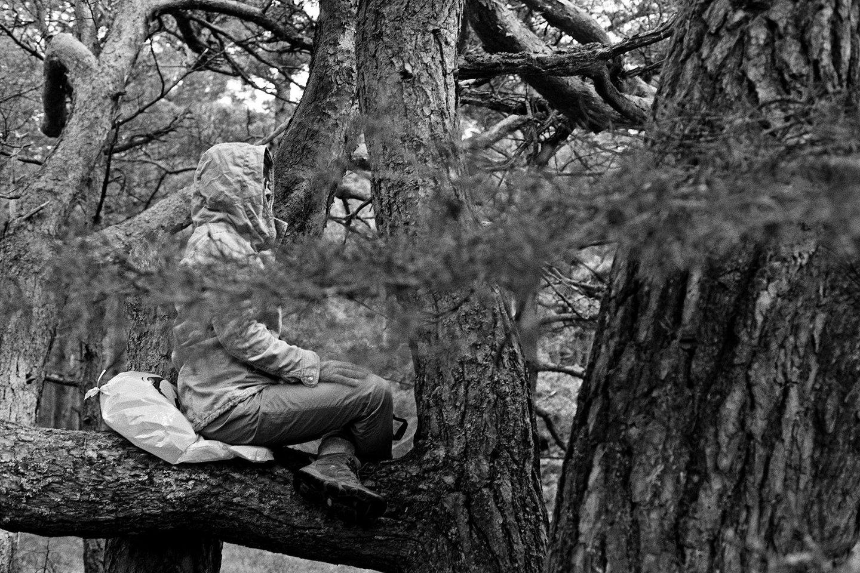 """Jono Staselio nuotrauka """"Meditacija""""."""
