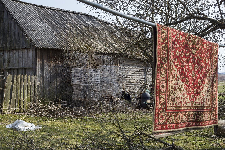 """Ritos Stankevičiūtės-Kazakevičienės ciklas """"Didelių istorijų nėra"""" (3)."""