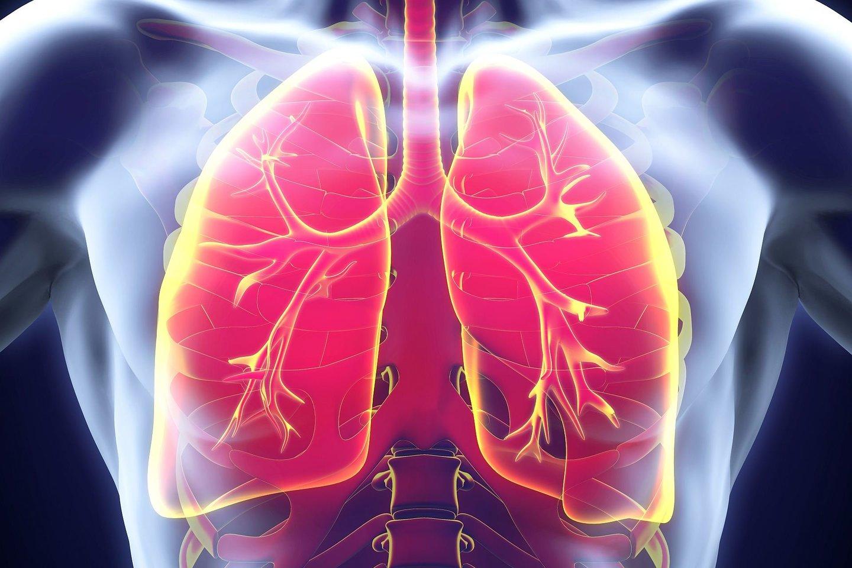 Dvi mokslininkų grupės nepriklausomai viena nuo kitos aptiko naują, retą plaučių ląstelių tipą.<br>123RF nuotr.