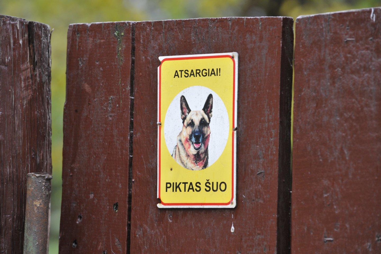 Šuns šeimininkas siunčiamas už grotų.<br>V.Ščiavinsko asociatyvi nuotr.