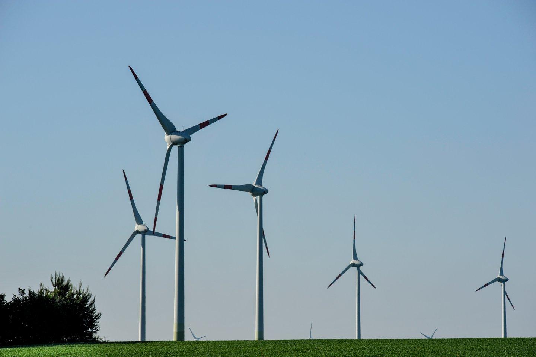Kuo toliau, tuo aktyviau didžiosios pasaulio korporacijos renkasi naudoti elektros energiją, pagamintą tik iš atsinaujinančių šaltinių.<br>V.Ščiavinsko nuotr.