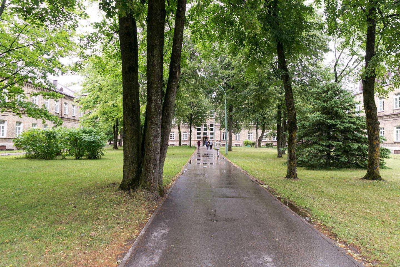 Respublikinę Vilniaus psichiatrijos ligoninę supa graži aplinka.<br>T.Bauro nuotr.