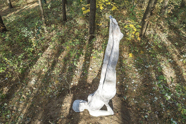 Kaip ir kitos skulptūros, betoninė moteris Sima pasižymi įspūdingu dydžiu.<br>S.Žiūros nuotr.