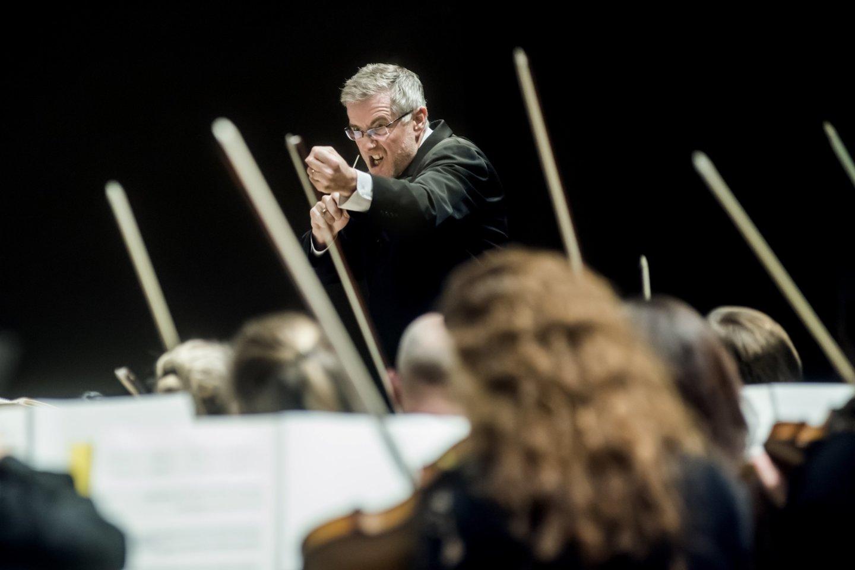 """""""Gaidos"""" koncerto akimirka.<br>D.Matvejevo nuotr."""