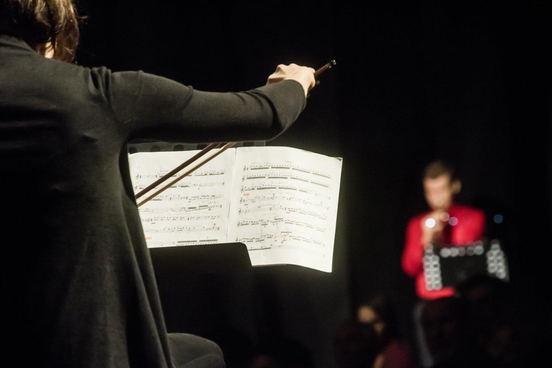 "Lietuvos ansamblių tinklo koncertas""Virtual Orchestra"".<br>D.Matvejevo nuotr."