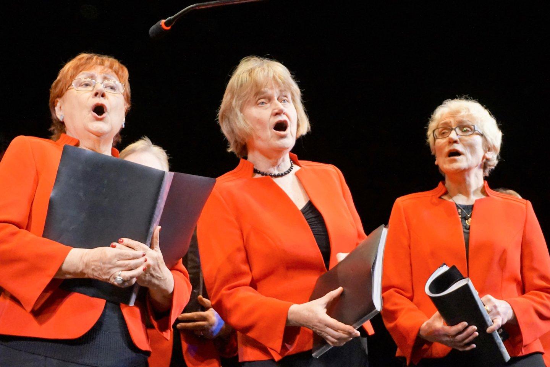 """Birštono neįgaliųjų draugijos moterų vokalinis ansamblis """"Sugrįžki, jaunyste"""" džiugina daugiabalsiu dainavimu.<br>Aldonos Milieškienės nuotr."""
