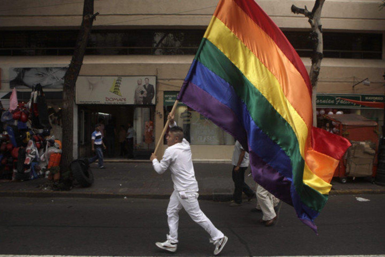 Anot teismo, teisės susijungti šeimai ribojimas tarp tos pačios lyties asmenų nesuderinamas su diskriminacijos draudimu ir nuostatomis, ginančiomis žmogaus orumą.<br>Reuters nuotr.