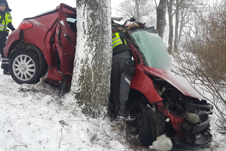 Siaubinga avarija Šilutės r.: po smūgio į medį 22 m. vairuotoja be sąmonės išvežta į ligoninę.<br>R.Žalgevičiaus nuotr.