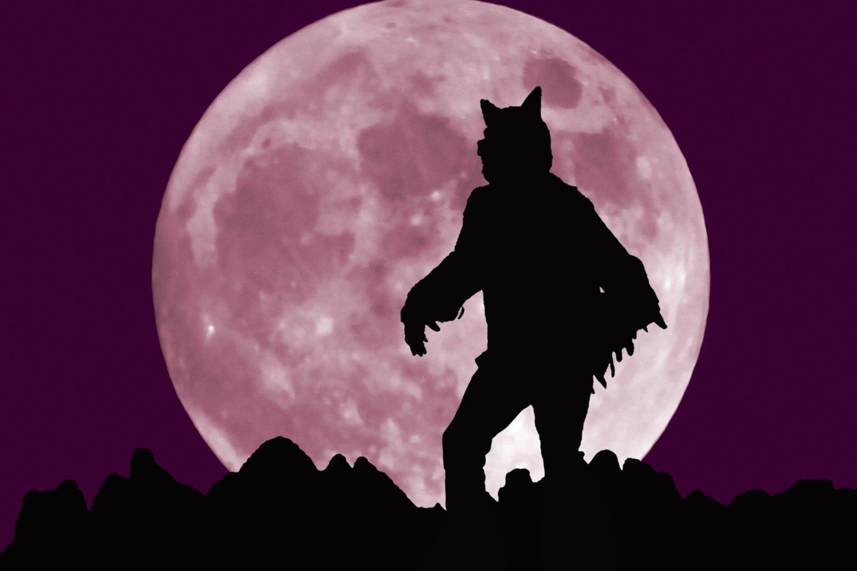 Mėnulis užtems Liūto ženkle ir paveiks daugelio žmonių gyvenimą.<br>123rf nuotr.