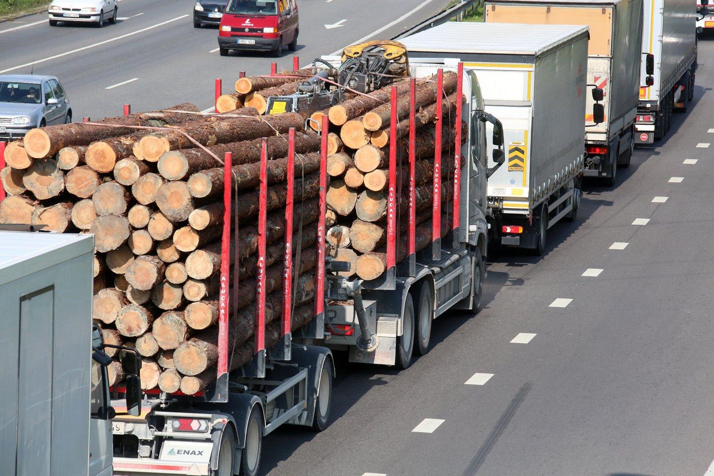 """""""Baltpool"""" tikslas yra sudaryti sąlygas visiems rinkos dalyviams prekiauti medienos produktais konkurencingoje rinkoje, kurioje kainą formuoja esamas pasiūlos ir paklausos santykis.<br>M.Patašiaus nuotr."""