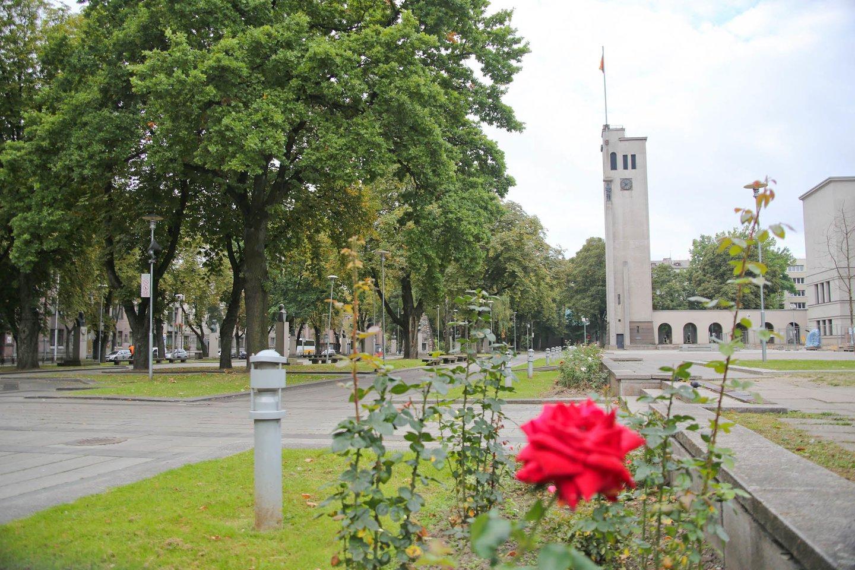 Kauno centre stovintis kariljono ir laikrodžio bokštas buvo pastatytas 1937 metais.<br>G.Bitvinsko nuotr.