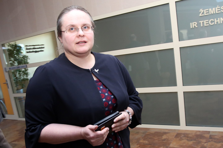Antradienį Seimas po pateikimo pritarė A.Širinskienės įregistruotam nutarimo projektui, kuriame numatyta parlamentinį tyrimą atlikti ir pateikti išvadą Seimui iki 2019 m. gruodžio 15 d.
