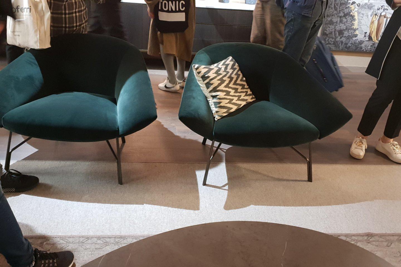Jei nėra gero apšvietimo, vyraujančią spalvą galima vadinti juoda, naudojant apšvietimą, pasirodo gili žalia, mėlyna.<br>Editos Stankevičiūtės-Righetto nuotr.