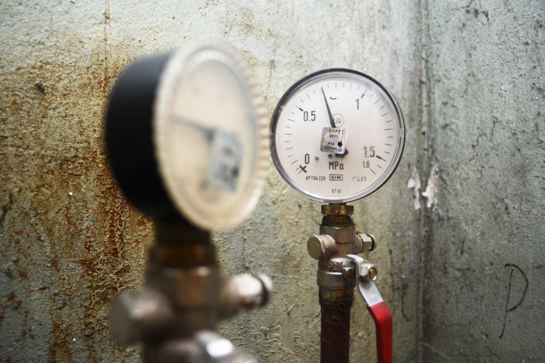 Svarsto, ar diegti išmanius elektros, dujų, šilumos, vandens skaitiklius.<br>J.Stacevičiaus nuotr.