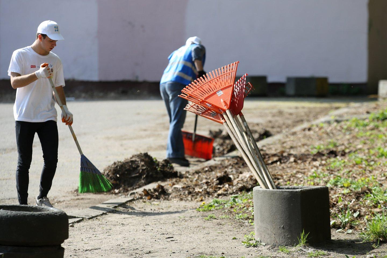 Tvarkymosi akciją savanoriai rengia nuo 2008 metų.<br>T.Bauro nuotr.