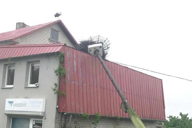 Gandras ant pastato stogo budėjo ir išvežus nuvirtusį gandralizdžio stulpą.<br>E.Kazlaučiūnaitės nuotr.