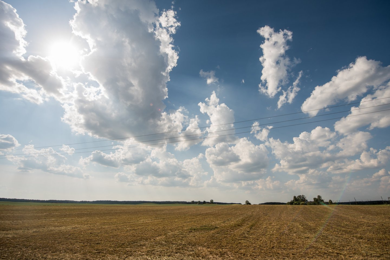 Varėnos rajono gyventojai kitos tokios baisios sausros neprisimena.<br>D. Umbraso nuotr.
