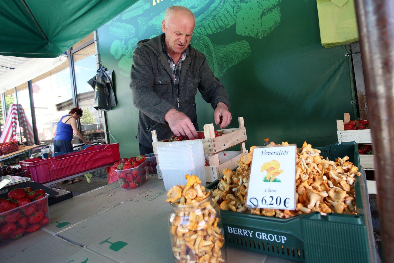 Kauno stoties turguje dzūkas V.Grigas parduoda pirmąsias voveraites<br>stop kadras