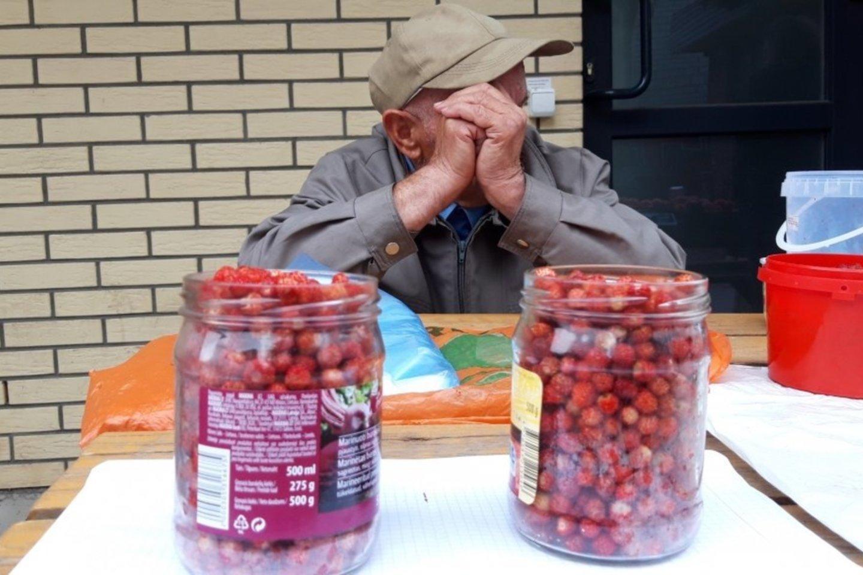 Jotvingių turguje parduoda žemuoges ir voveraites