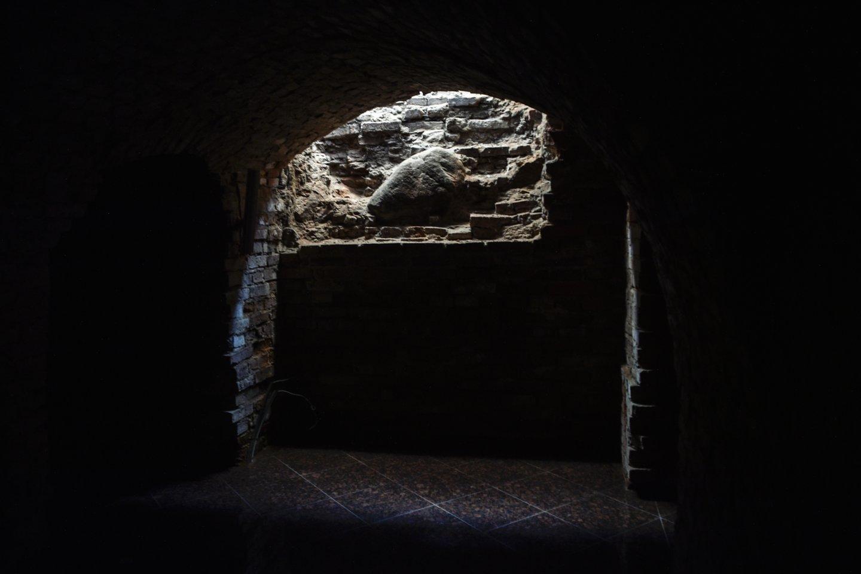 Telšių šv. Antano Paduviečio katedros rūsiai.<br>V.Ščiavinsko nuotr.