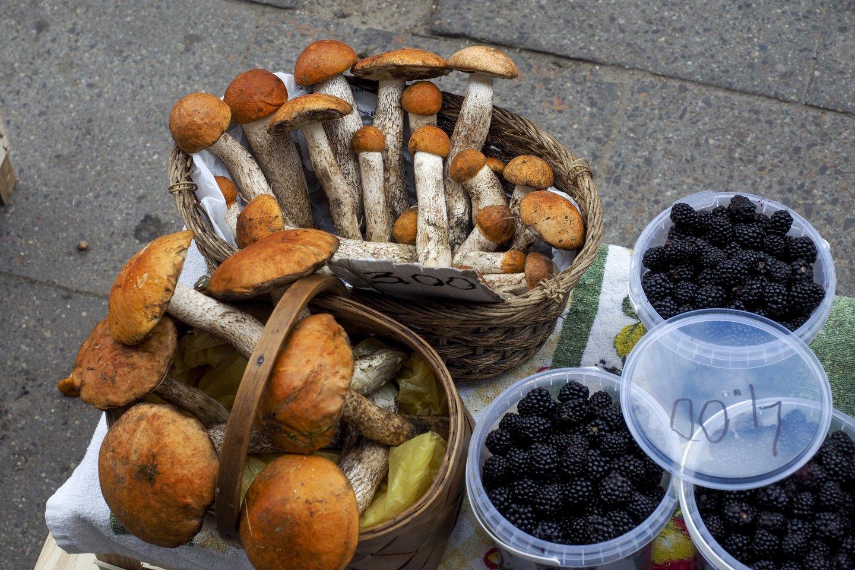 Lietuvoje mažėjant grybų, verslas ieško kitų galimybių.<br>V.Ščiavinsko nuotr.