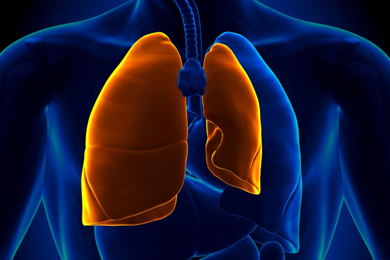 Dėl pastangų išdainuoti ypač aukštas natas, pasirodo, gali net subliūkšti plaučiai.<br>123rf nuotr.