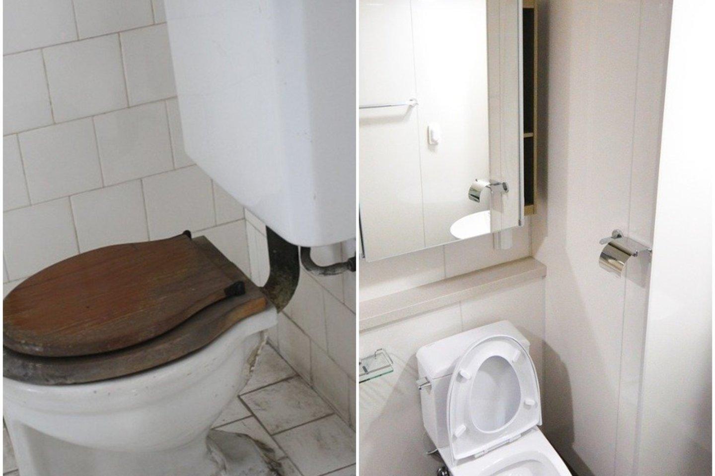 Išvalyti klozetui gali pakakti poros nebrangių priemonių.<br>pixabay.com nuotr.