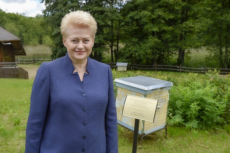 Dalia Grybauskaitė.<br>V.Ščiavinsko nuotr.
