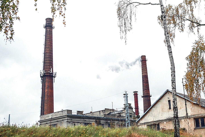 Jau netrukus šilumą gaminančios bendrovės įjungs savo įrenginius, o šildymas turėtų bent šiek tiek atpigti. Mat biokuro kainos pastaraisiais mėnesiais patraukė žemyn dėl didėjančio importo iš Baltarusijos.<br>M.Patašiaus nuotr.