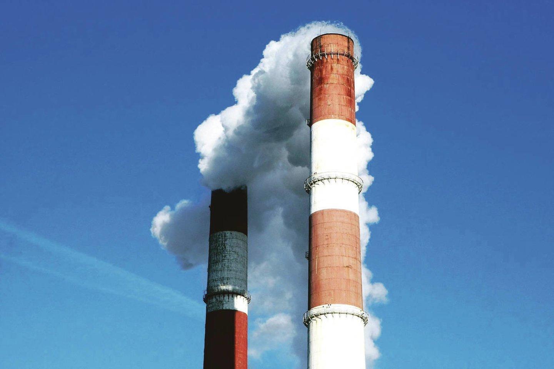 Jau netrukus šilumą gaminančios bendrovės įjungs savo įrenginius, o šildymas turėtų bent šiek tiek atpigti. Mat biokuro kainos pastaraisiais mėnesiais patraukė žemyn dėl didėjančio importo iš Baltarusijos.<br>P.Mantauto nuotr.