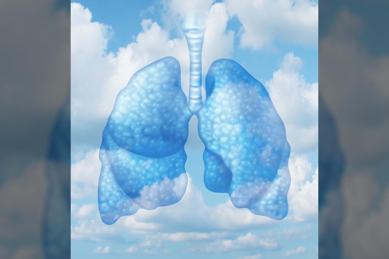 Jeigu kvėpuosite oru, kuriame yra žymiai didesnė deguonies (O2) koncentracija, plaučiuose esantis deguonis atims iš kraujo galimybę jį išnešioti.<br>123RF iliustr.