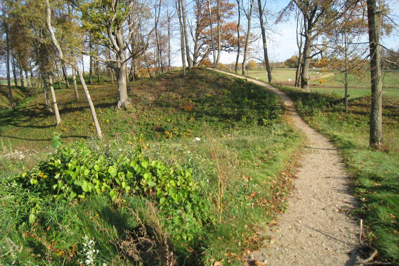 Upytės, Tarnagalos piliakalnis vadinamas Čičinsko kalnu.<br>M.Augulytės nuotr.