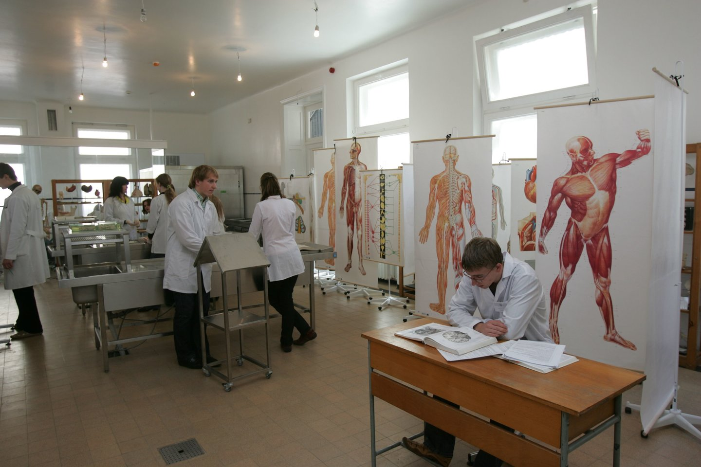Medicinos studijų programa Vokietijoje valstybei vienam asmeniui kainuoja vidutiniškai apie 200 tūkst. Eur, tačiau pačios studijos studentams yra nemokamos arba kainuoja simbolinį administravimo mokestį, t. y., apie 500 Eur už semestrą.<br>A.Barzdžiaus nuotr.
