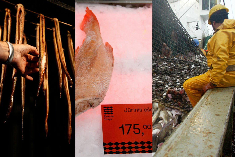 Anot E. Greimo, ateityje žuvis gali kainuoti itin brangiai, mat vartotojai nesuvokia, kaip sparčiai nyksta jų pamėgtos žuvys.<br>Scanpix/Reuters/R. Danisevičiaus nuotr.
