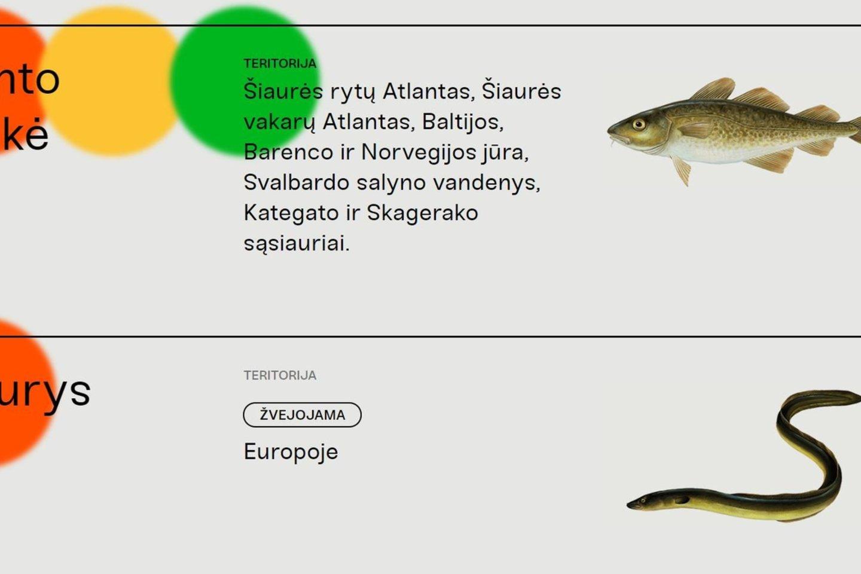 Žuvies vartojimo gidas.<br>LGF nuotr.