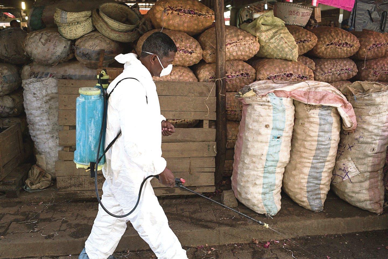 """Kongo Demokratinėje Respublikoje, Madagaskare ir Peru yra užfiksuojama daugiausia maro protrūkių. O pastaraisiais metais nuo jų kenčia mongolai.<br>AFP/""""Scanpix"""" nuotr."""