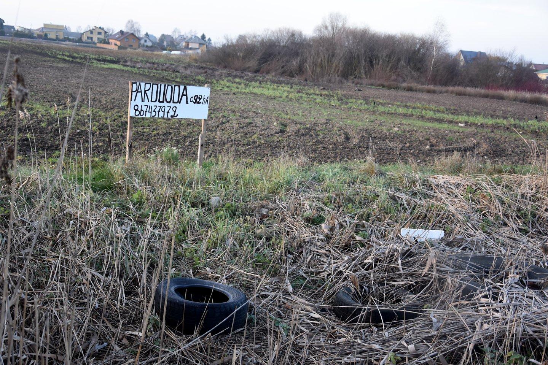 Prie Alytaus parduodami žemės sklypai dėl gaisro gali prarasti vertę.<br>A.Srėbalienės nuotr.